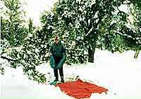 Grand Canyon Hike Photo: Desert View Campground - Doug sets up in the snow