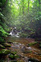 RV trip photo: Great Smoky Mountains National Park - Stream along Hen Wallow Falls trail