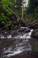RV trip photo: Great Smoky Mountains National Park - Grotto Falls trail along Roaring Fork nature trail
