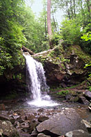 RV trip photo: Great Smoky Mountains National Park - Grotto Falls along Roaring Fork nature trail