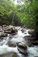 RV trip photo: Great Smoky Mountains National Park - Little Pigeon Creek, Ramsay Cascade trail